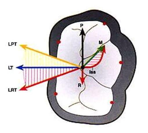 Advanced Dental Occlusion